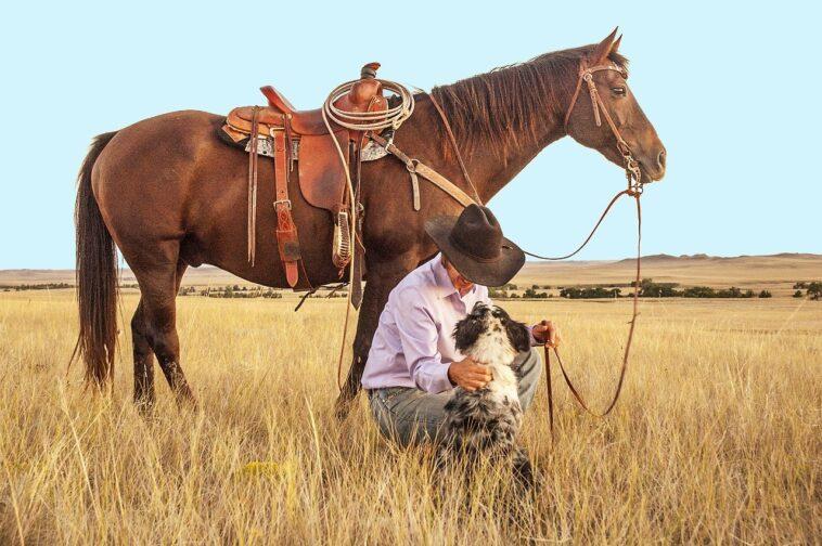 Best Barrel Saddles