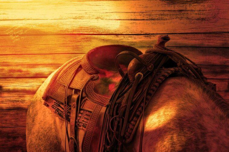 Best Jumping Saddles