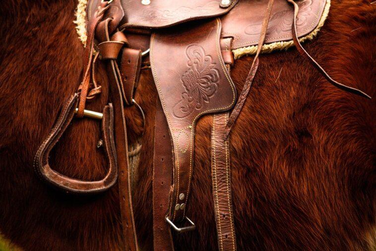 Best English Saddles
